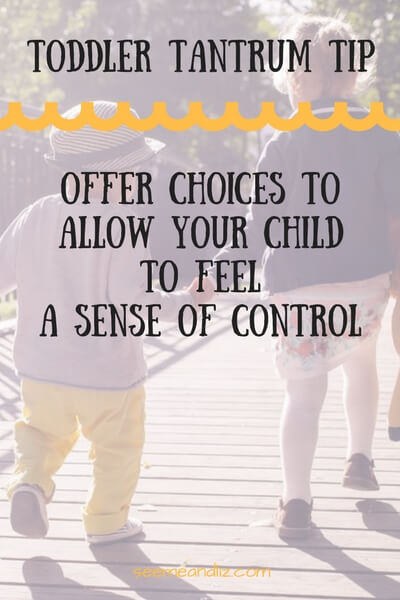 ways to handle the terrible twos offer choices