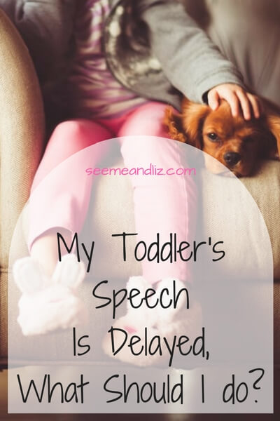 My Toddlers speech is delayed what should I do?