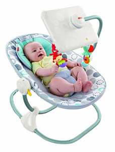 fisher price ipad apptivity seat newborn toddler
