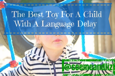 The Best Toy For A 3 Year Old With A Language Delay Is...